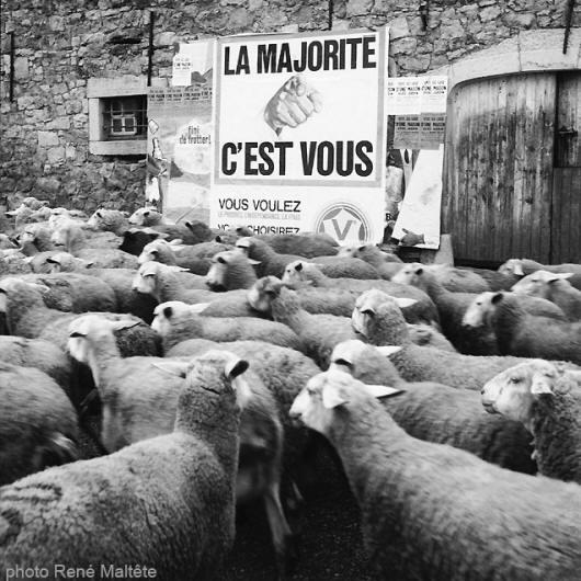 Les bonnes raisons de s'abstenir La_majorite_c'est_vous_small